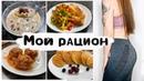 Мой ПП Рацион на день Рецепты с соковыжималкой Oberhof DRUCKEN Q-4