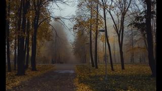 Тула. Осень 2009
