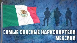 МЕКСИКА   Самые известные наркокартели страны