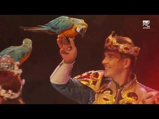 Королевский цирк на гастролях в Кисловодске