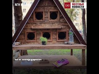 Домик для бездомных кошек в московском дворе