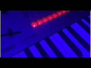 Ableton Jam Performance - Korg Monologue Acid Bass Electro