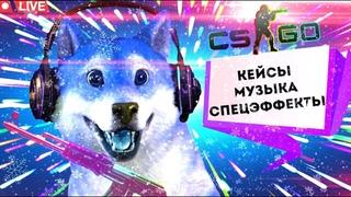 НОВОГОДНИЙ СТРИМ С ПЁСИКОМ/РОЗЫГРЫШ🎁/КЕЙСЫ/МОНТАЖ/CS:GO/ПИАР/МУЗЫКА/ ТОП СТРИМ🔴