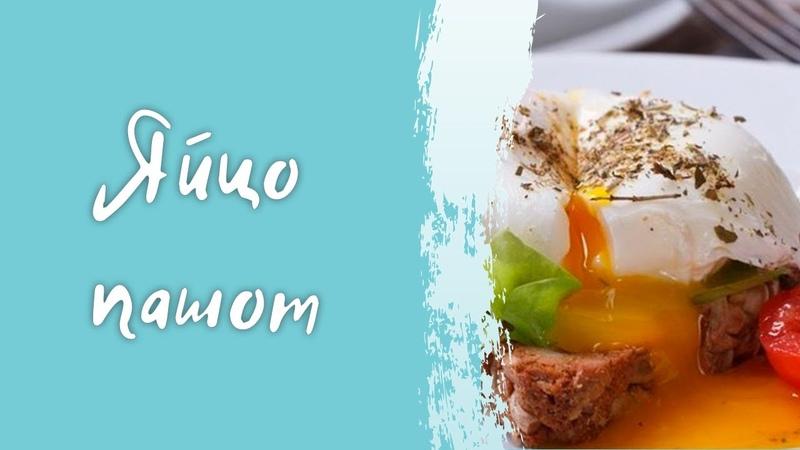 Яйцо пашот 2 способа сервировки простой рецепт приготовления в домашних условиях