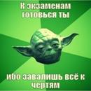 Фотоальбом Ольги Захаровой