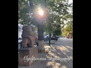 Video by Maria Dremina