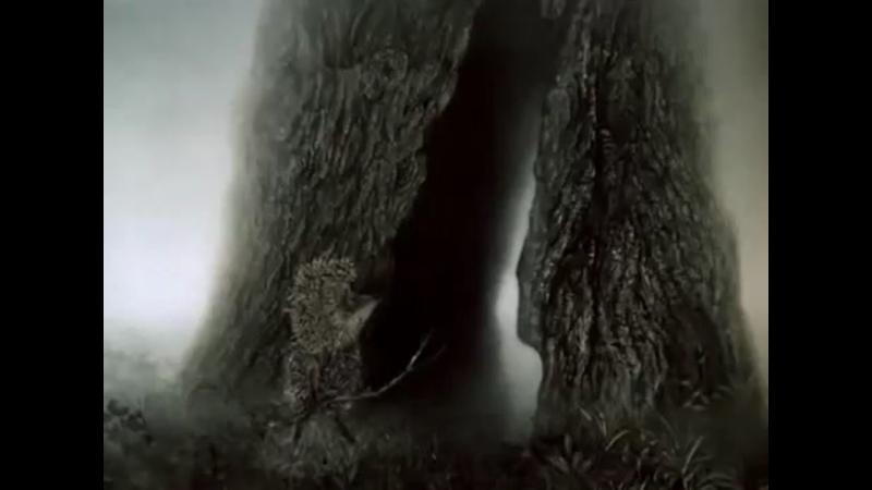 Видео от Евгении Владимировой