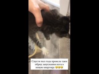 Видео от Анны Аристовой