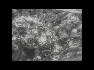 Концлагерь Клоога, сентябрь 1944