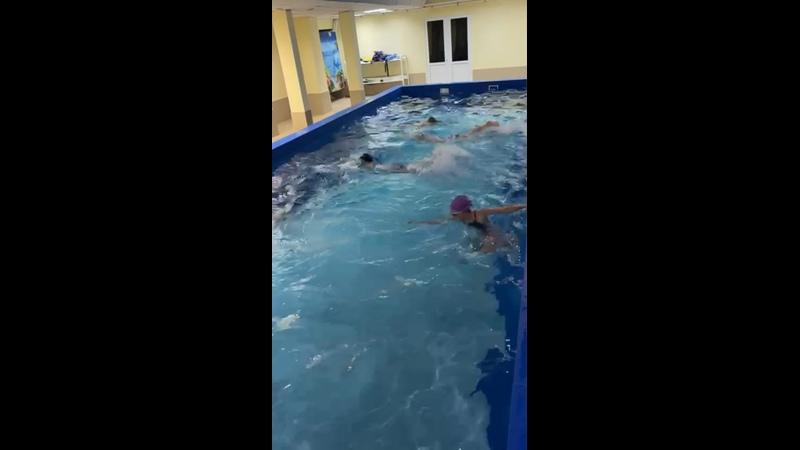 Видео от Бассейн Акулёнок