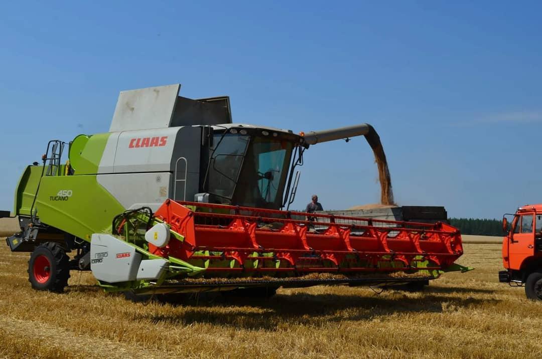 В Петровском районе продолжается уборка озимых зерновых культур