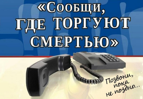 Сегодня в Санкт-Петербурге и Ленинградской области...