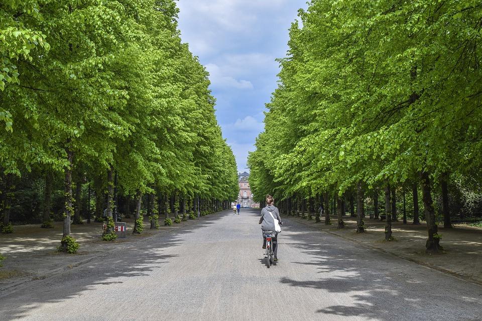 В Ленинградской области открылось 3 новых маршрута для велосипедистов