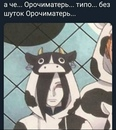 Анастасия Роот (nasta_root)