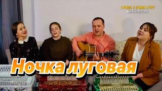 Ансамбль ПТАШИЦА - Ночка луговая - Месяц спрятался за рощу / Песня для души