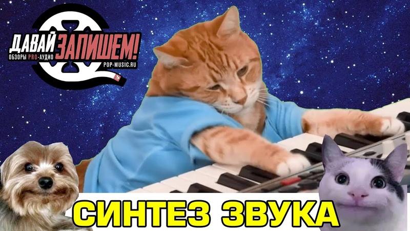 Синтез звука Просто о сложном на примере Behringer CAT