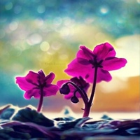 Личная фотография Нины Воропаевой