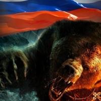 Личная фотография Олега Викторова