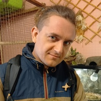 Личная фотография Вадима Домкова ВКонтакте